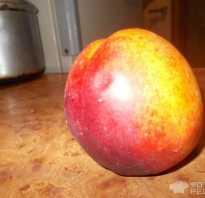 Цукаты из персиков на зиму простой рецепт