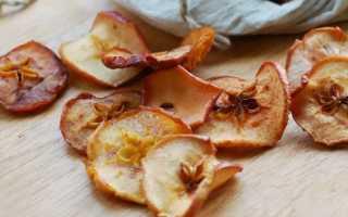 Можно ли сушить яблоки в духовке электрической