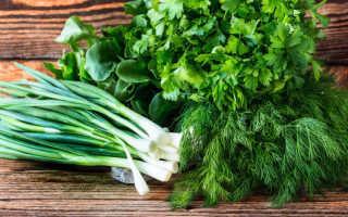 Можно ли кормящей маме есть зелень