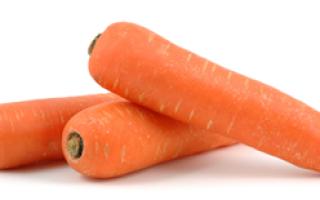 Сколько можно хранить вареную морковь в холодильнике