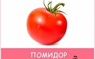 Картинки как растут овощи для детей