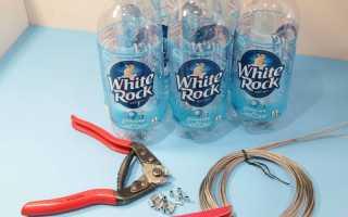 Как сделать так чтобы в бутылке оказался целый спелый огурец