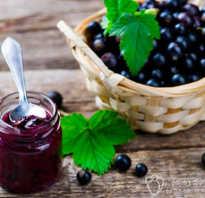 Как приготовить черную смородину на зиму чтобы сохранить витамины