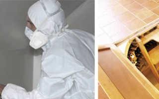 Как побелить погреб известью если сильная влага