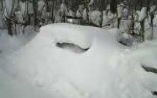 Зимовка пчел на воле под снегом в сибири