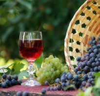 Как приготовить вино из винограда молдова в домашних условиях
