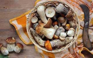 Сколько можно хранить открытые маринованные грибы в холодильнике