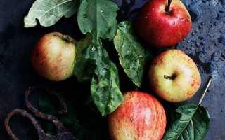Джем из яблок без сахара на зиму