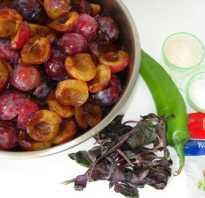 Соус из сливы на зиму рецепт кисло сладкий