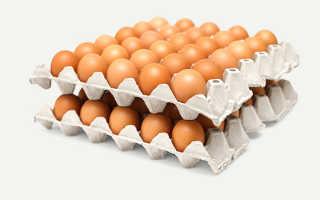 Что можно сделать из ячейки из под яиц