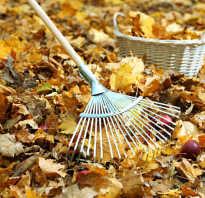 Как уничтожить опавшие листья