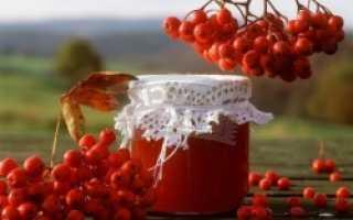 Как сделать сок из красной рябины