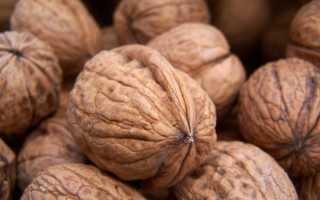 Можно ли грецкие орехи сушить в духовке