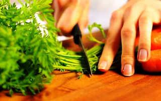 Морковный чай из ботвы как приготовить польза и вред