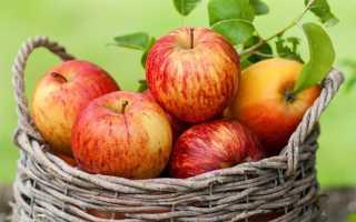 Можно ли при гастрите есть яблоки