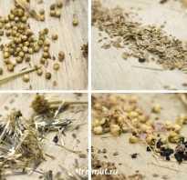 Как хранить семена горчицы зимой