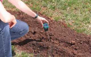 Как сделать кислую почву нейтральной