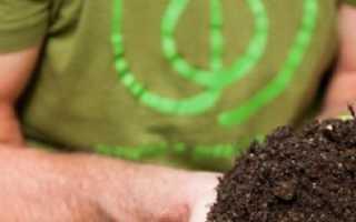 Как ускорить созревание компоста с помощью мочевины