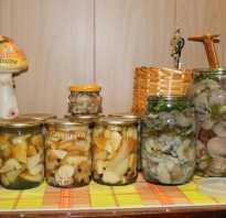 Можно ли закатать соленые грибы в банки