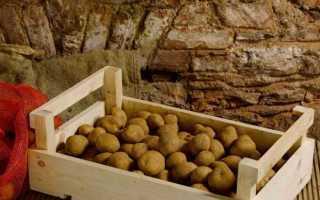 Какая температура должна быть в погребе для хранения картофеля