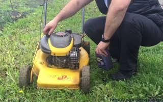 Можно ли заливать автомобильное масло в газонокосилку