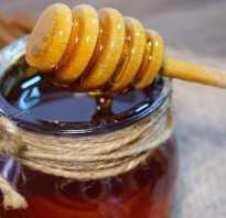 Как определить падевый мед в сотах