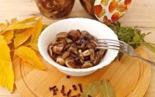 Что можно сделать с грибами опятами при заготовке