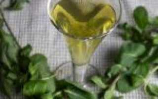 Настойка из лимона и мяты на спирту