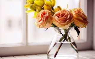 Как часто нужно менять воду в вазе с розами