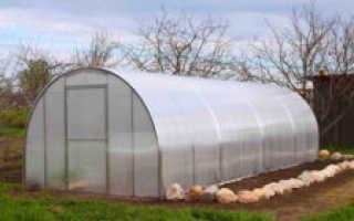 Как подготовить почву под огурцы весной в теплице