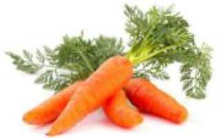 Сушка моркови на зиму в домашних условиях