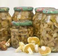 Маринованные грибы сколько можно хранить