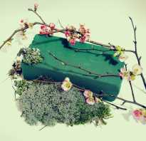 Губка для цветов как пользоваться