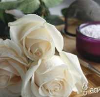 Как обработать цветы воском
