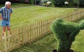 Как напакостить соседу по даче