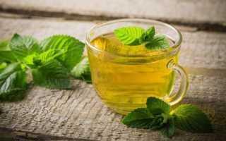 Мята как правильно собирать и сушить для чая