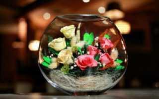 Как стабилизировать цветы в домашних условиях