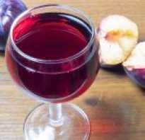 Вино из слив с яблоками в домашних условиях
