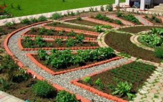 Как правильно ухаживать за огородом