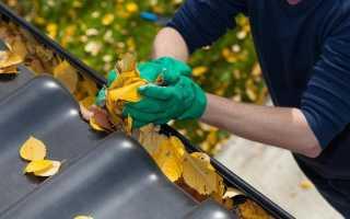 Как подготовить молодые деревья к зиме осенью