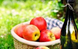 Как сделать сидр из сока яблок