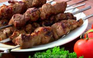 Сколько жарить шашлык из курицы на мангале