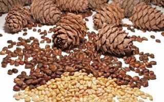 Можно ли беременным кедровые орехи