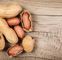 Земляные орехи польза и вред для организма