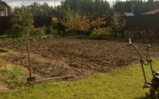 Зачем копать огород под зиму