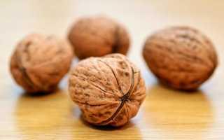 Грецкий орех польза и вред для беременных