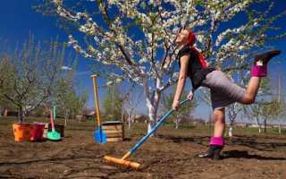 Как правильно растут в огороде или на огороде как