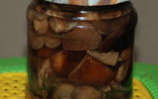 Засолка грибов свинухов на зиму в банках