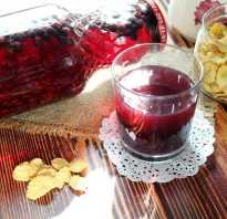 Как варить компот из красной черемухи на зиму