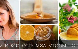 Мед на голодный желудок утром польза и вред